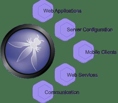 OWASP ASVS coverage